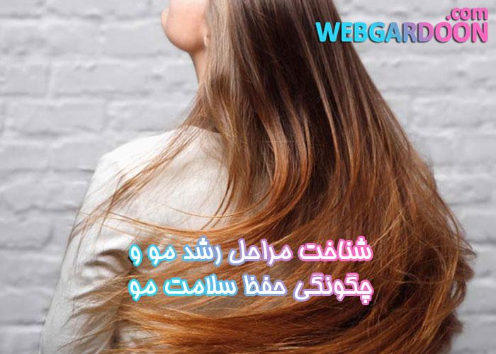 شناخت مراحل رشد مو و چگونگی حفظ سلامت مو